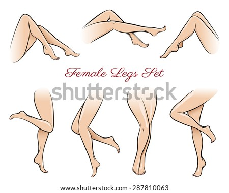 Female legs set. Body beautiful, sexy beauty fashion, sexual naked, attractive nude. Vector illustration - stock vector
