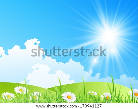 field of daisies with bright sun - stock vector