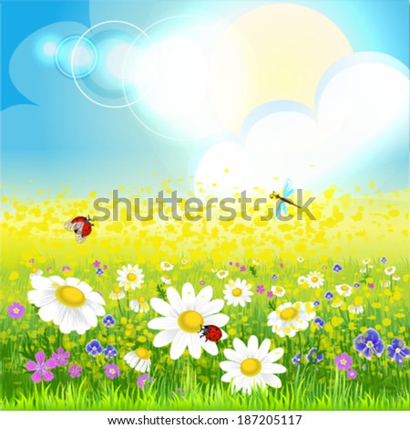 Field with flowers - stock vector