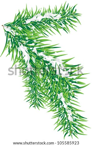 fir-tree branch strewn lightly with snow - stock vector