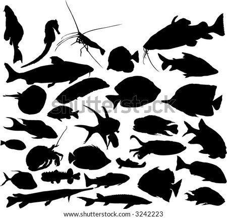 Fish silhouettes - stock vector