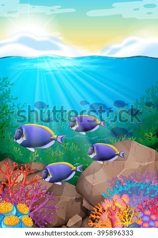 Fish swimming under the ocean illustration - stock vector