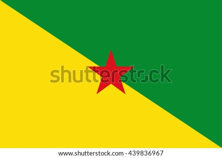 Flag of French Guiana - stock vector