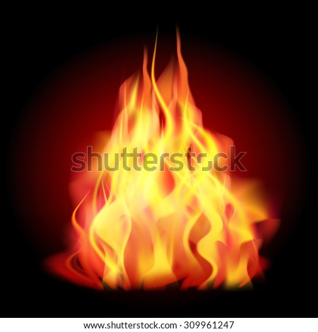 Flames of fire as the background. Vector illustration - stock vector