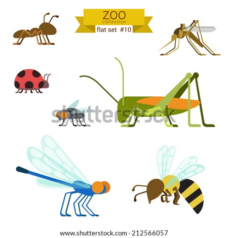 Flat design vector insects and ants icon set. Ant, mosquito, ladybug, fly, grasshopper, locust, dragonfly, wasp. Flat zoo children cartoon collection. - stock vector