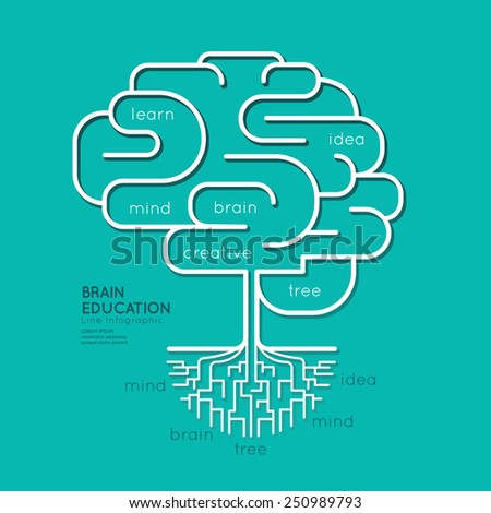 Flat linear Infographic Education Outline Brain Roots Concept.Vector Illustration. - stock vector