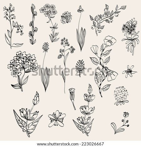 Floral background. Set realistic plants and branches - stock vector