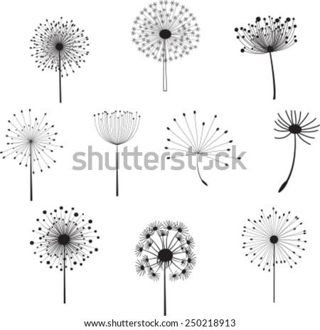 Floral Elements for you design with different  dandelions. Vector - stock vector