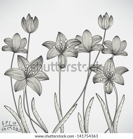 Floral Lily Elements for design, EPS10 Vector background - stock vector