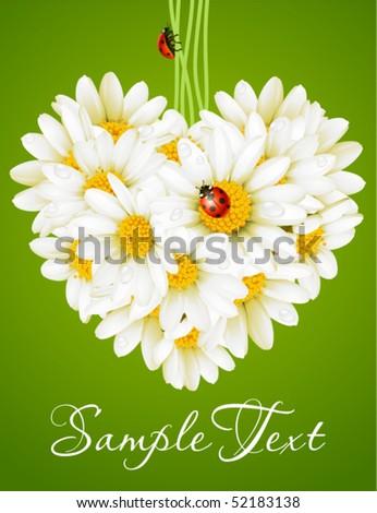 Floral love card (camomile heart) - stock vector