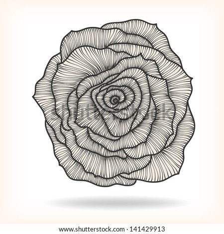 Floral Rose Elements for design, EPS10 Vector background - stock vector
