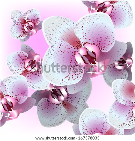 floral seamless pattern with orchid. Vector  - stock vector
