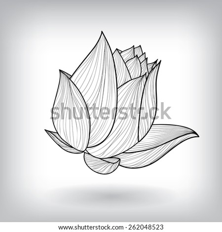 Floral Water Lily Elements for design, EPS10 Vector background - stock vector