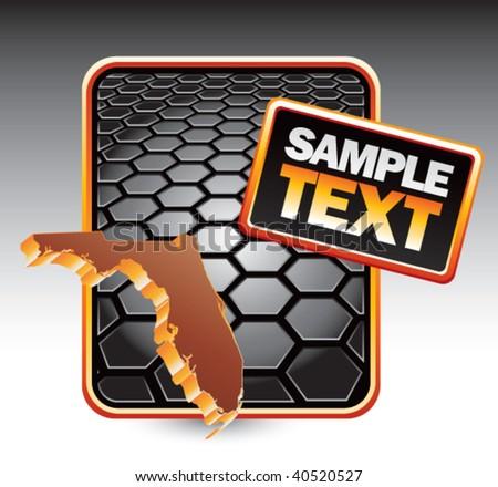 florida state shape on black hexagon template - stock vector