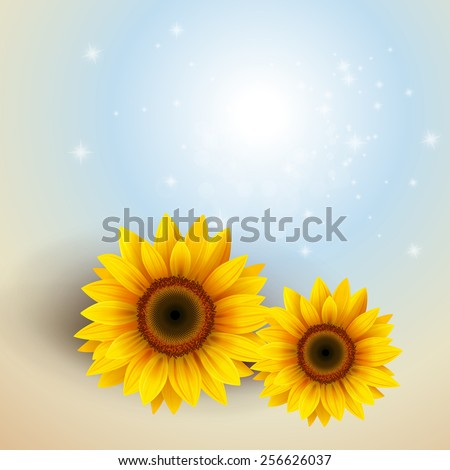 Flower Background with sunflower, vector illustration. - stock vector