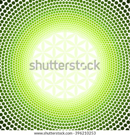 flower of Life background, abstract background - stock vector