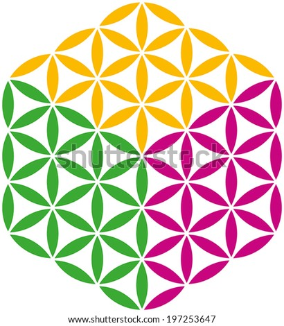 Flower of Life Cube created with three different colors. Isolated vector illustration on white background. - stock vector