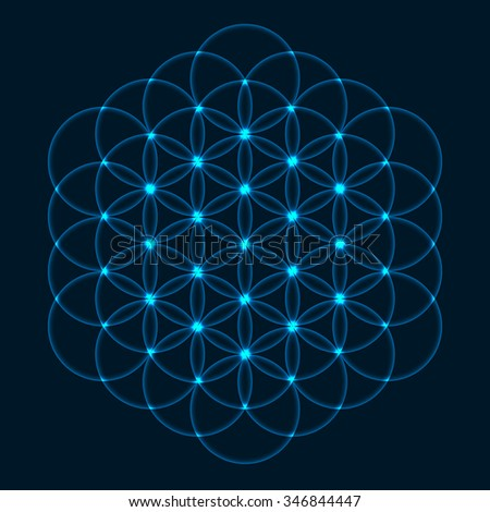 Flower of Life. Sacred Geometry. Symbol of Harmony and Balance. Vector Illustration. - stock vector