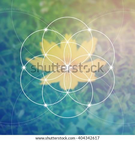 Flower of life - the interlocking circles ancient symbol. Sacred geometry. Mathematics, nature, and spirituality in nature. Fibonacci row. The formula of nature. Self-knowledge in meditation.  - stock vector