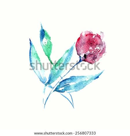 Flower. Watercolor birthday card with rose. Floral decorative element. - stock vector
