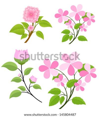 Flowers Branches Vectors - stock vector