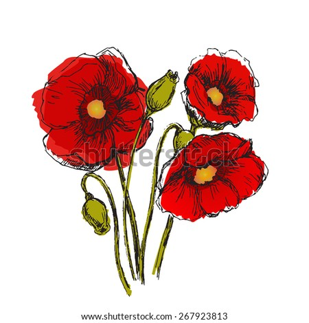 Flowers set color. Sketch converted to vectors. - stock vector