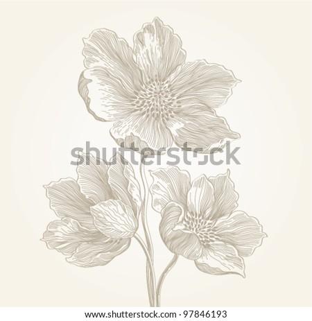 flowers, vintage engraved illustration - stock vector