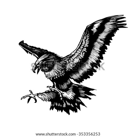 flying eagle - stock vector