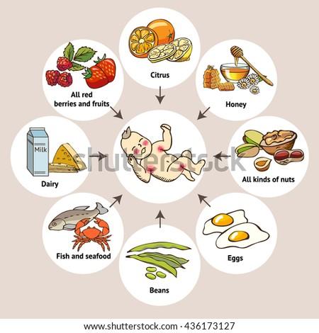 Food allergens. Scheme - stock vector