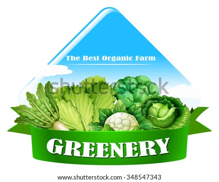 Food logo with fresh vegetables illustration - stock vector