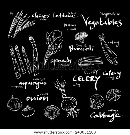 food menu illustrations / Set of food ingredients - vector illustrations - stock vector