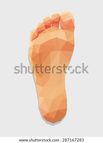 foot right leg bottom view low poly polygon. - stock vector