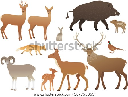 Forest animals - stock vector