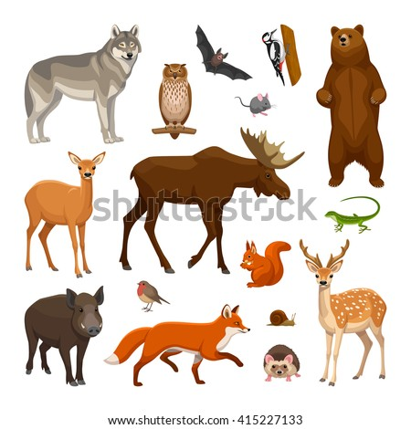 Forest animals set - stock vector