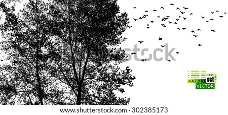 Forest tree silhouette with birds. Vector - stock vector