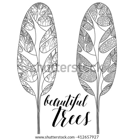 Forest trees isolated, high trees. Vector botany detailed artwork. Coloring book page for adult. Bohemia concept. Black and white - stock vector