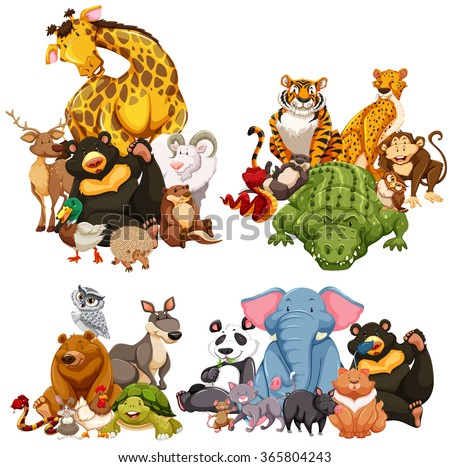 Four group of wild animals illustration - stock vector
