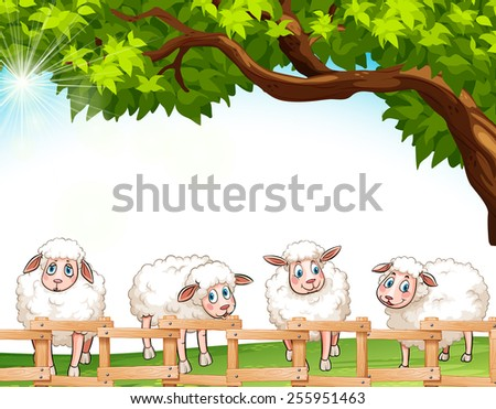 Four sheeps at the field - stock vector