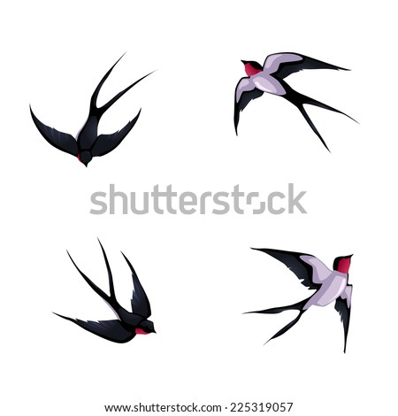Four swallows. Vector cartoon isolated animals. - stock vector