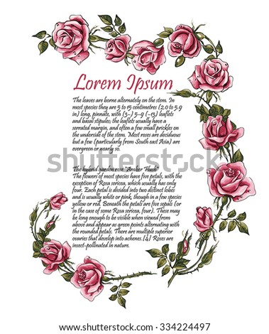 Frame from roses. Roses brunch. Pattern from roses. Wedding drawings. Flower backdrop. Place for your text. Vector hand drawn illustration - stock vector