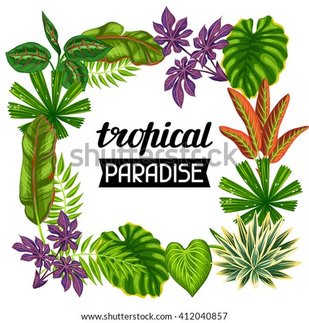 Frame with tropical plants and leaves. Image for advertising booklets, banners, flayers. - stock vector