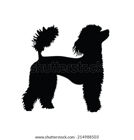 Poodle Head Silhouette French poodle vector