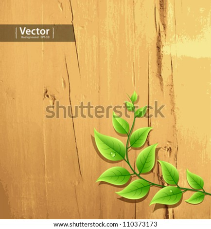 fresh green leaf on wood wallpaper background, vector illustration - stock vector