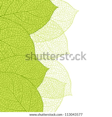 Fresh green leaves background - vector illustration - stock vector