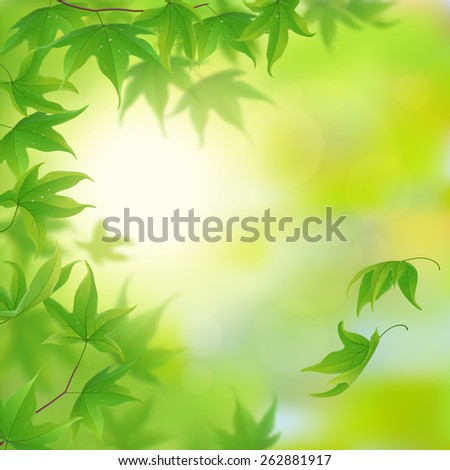 Fresh green leaves in spring, vector illustration - stock vector