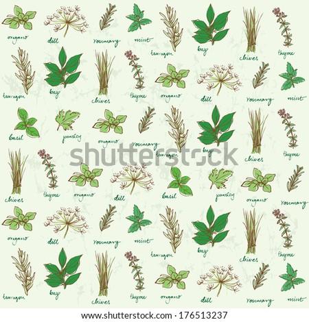 Fresh herbs background vector - stock vector