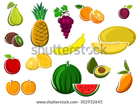 Fresh juicy watermelon, apple, kiwi, orange, lemon, grape, avocado, mango, melon, banana, pineapple, plum, pear and peaches fruits. For agriculture or healthy food design - stock vector
