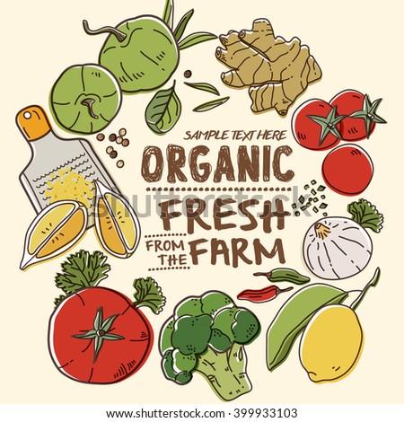 Fresh organic farm vegetables - stock vector