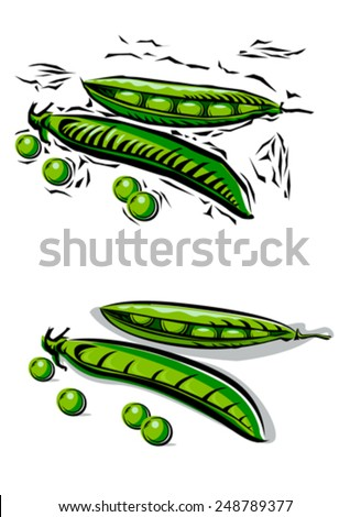 Fresh Peas and beans in woodcut style - stock vector
