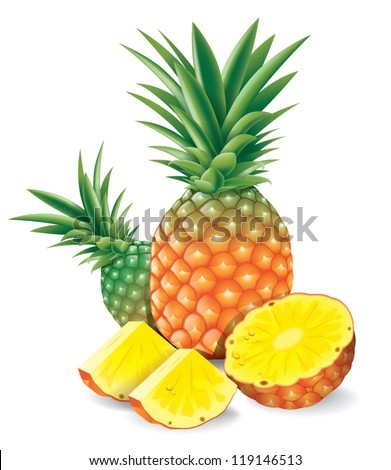 Fresh pineapple with slices isolated on white - stock vector